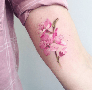 Цветы — моя радость! mMPpA3