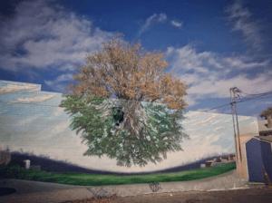 Гамма Акоста, «Древо жизни» Еще одна работа американск