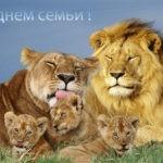 Светлана Власова МГУ Ломоносова Моя Визитка